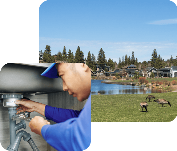 Drain Inspections, Repair & Maintenance
